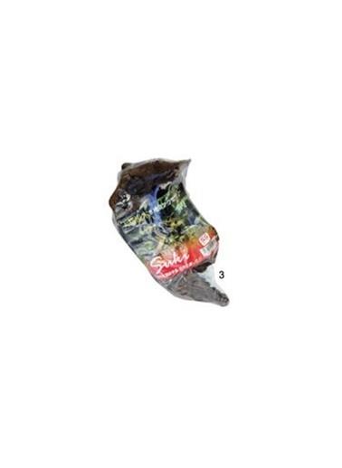 JBL Mango Kökü (M) Şiling 29-36  Cm Renkli